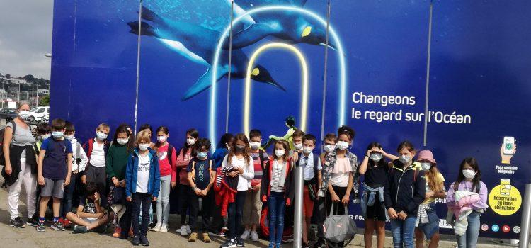 Protégé: Visite à Océanopolis